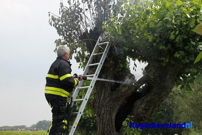 Brandweer rukt uit voor brandende boom op Oude Zeedijk - Foto: Marcel Kloet