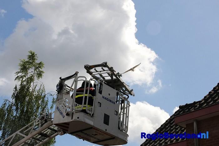 Brandweer redt jonge meeuw uit dakgoot woning Goes - Foto: Marcel Kloet