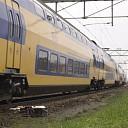 Paarden op spoor de oorzaak van vertraging en uitval treinen