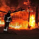 Drietal boxen van paardenstal volledig uitgebrand te Nisse