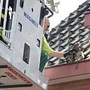 Brandweer redt jonge meeuw uit dakgoot woning Goes